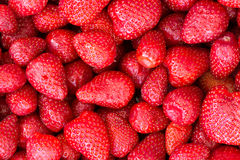 jordgubbar för bakgrundsmatserie Royaltyfria Bilder
