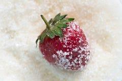 Jordgubbar i socker Arkivbild
