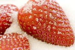 Jordgubbar i socker royaltyfria bilder