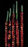 Jordgubbar och blåbär på böjelser Arkivfoto