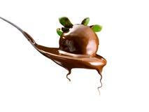 Jordgubbar och choklad Royaltyfria Bilder