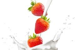 Jordgubbar och mjölkar färgstänk Arkivfoton