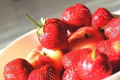 Jordgubbar och persikor Arkivbild