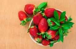 Jordgubbar Organisk Closeup med mintkaramellen, lantliga naturliga non GMO Royaltyfri Foto