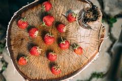Jordgubbar Organiska bär för mogen jordgubbe Saftigt nytt moget Royaltyfri Fotografi