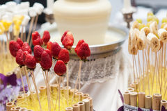 Jordgubbar på steknålar för chokladspringbrunnar som gifta sig efterrätten Arkivbild
