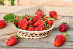 jordgubbar på trädgårds tabell Arkivfoton