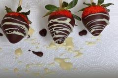 Jordgubbar som glasas i svartvit choklad, torkar på en platta På arbetet ytbehandla synliga droppar av choklad matlagning royaltyfri foto