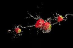 Jordgubbar som isoleras på svart bakgrund Arkivbild
