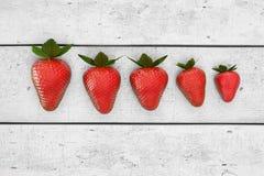 Jordgubbar som ligger på den vita tabellen i radbeställning Linje av jordgubben på den vita trätabellen, illustration 3d Royaltyfria Bilder