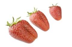 jordgubbar tre Royaltyfri Foto