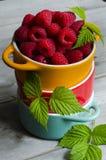 Jordgubbe, blåbär eller hallon Royaltyfri Foto