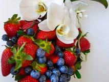 Jordgubbe, blåbärstilleben på vit bakgrund, sund mat, sommar Berry Gardening fotografering för bildbyråer