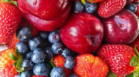 Jordgubbe blåbärstilleben, sund mat, sommar Berry Gardening royaltyfria foton