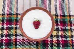 Jordgubbe i en bunke av yoghurt royaltyfria bilder
