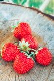 jordgubbe Jordgubbar Organiska bär Royaltyfria Foton