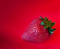 Jordgubbe mot röd bakgrund Royaltyfri Foto