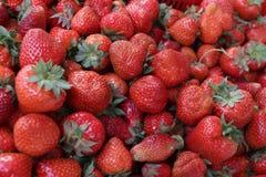 jordgubbe Nya organiska jordgubbar i dagsljus på en marknad Bär fruktt bakgrund sund mat En ljus radda, är nya bär av en jordgubb Royaltyfri Fotografi