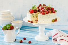 Jordgubbe och Basil Ice Cream Cake royaltyfri foto