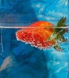 Jordgubbe och druvor i vatten med bubblor, coctail Fotografering för Bildbyråer