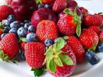 Jordgubbe röda plommoner, blåbärstilleben på vit bakgrund, sund mat, sommar Berry Gardening royaltyfri fotografi