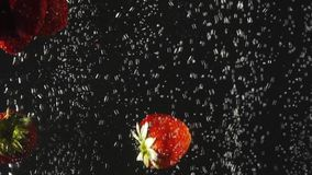 Jordgubbe som faller in i vattnet med bubblor på svart bakgrund Nya bär i vattnet Organiskt bär, frukt lager videofilmer