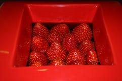 Jordgubbecloseup i en röd fyrkantig krus royaltyfri fotografi