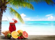 Jordgubbecoctail och tropisk frukt Fotografering för Bildbyråer