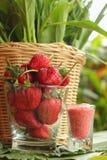 Jordgubbefruktbär Fotografering för Bildbyråer