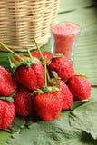 Jordgubbefruktbär Royaltyfri Bild