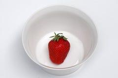 jordgubbeskyttel Royaltyfri Bild