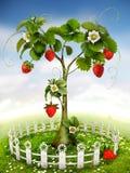 Jordgubbeträd stock illustrationer