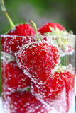 jordgubbevatten Royaltyfria Foton