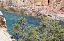 Jordiskt paradis i det medelhavs- Skärgård av Maddalena, Caprera ö Royaltyfri Bild