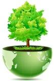 jordklotgreen vektor illustrationer