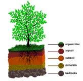 Jordlager och träd stock illustrationer