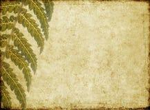 jordnära bildtextur för bakgrund Arkivfoto