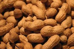 jordnötter för 1 bakgrund Royaltyfri Fotografi