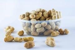 Jordnötter kärnar ur Många jordnötter i skal för closedof för bakgrund 1ds jordnötter för mkii för eos blir grund upp Arkivfoto