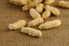 Jordnötter på den bruna säcken Royaltyfri Foto