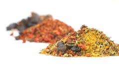 jordning överhopar olika kryddor Fotografering för Bildbyråer