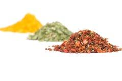 jordning överhopar olika kryddor Royaltyfri Fotografi