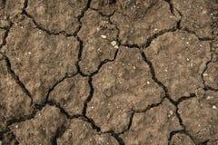 jordning Arkivfoto