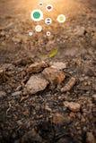 Jordning jordning, brun natur för organiskt lantbruk för bakgrund nästan arkivfoto