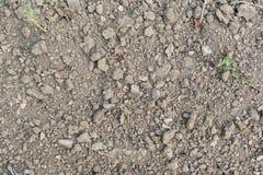 Jordning med stenar Arkivfoto