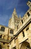 Jordningen av den Norwich domkyrkan arkivfoton