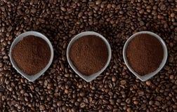 Jordningskaffe på kaffebönor arkivfoton