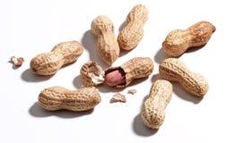 jordnötter Royaltyfria Bilder