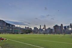 Jordsikt för lycklig dallek av Wan Chai Royaltyfri Fotografi