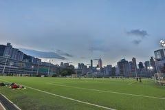 Jordsikt för lycklig dallek av Wan Chai Royaltyfri Bild